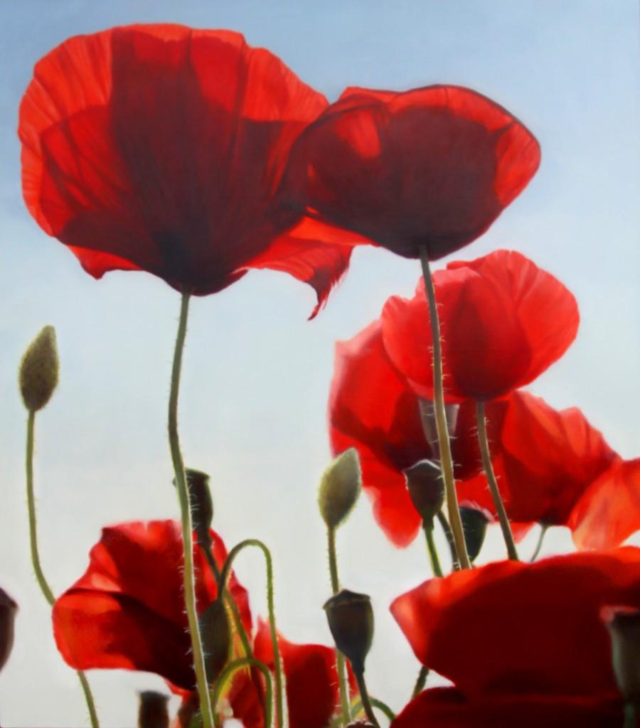 Poppies 150 x 170 cm (SOLD)